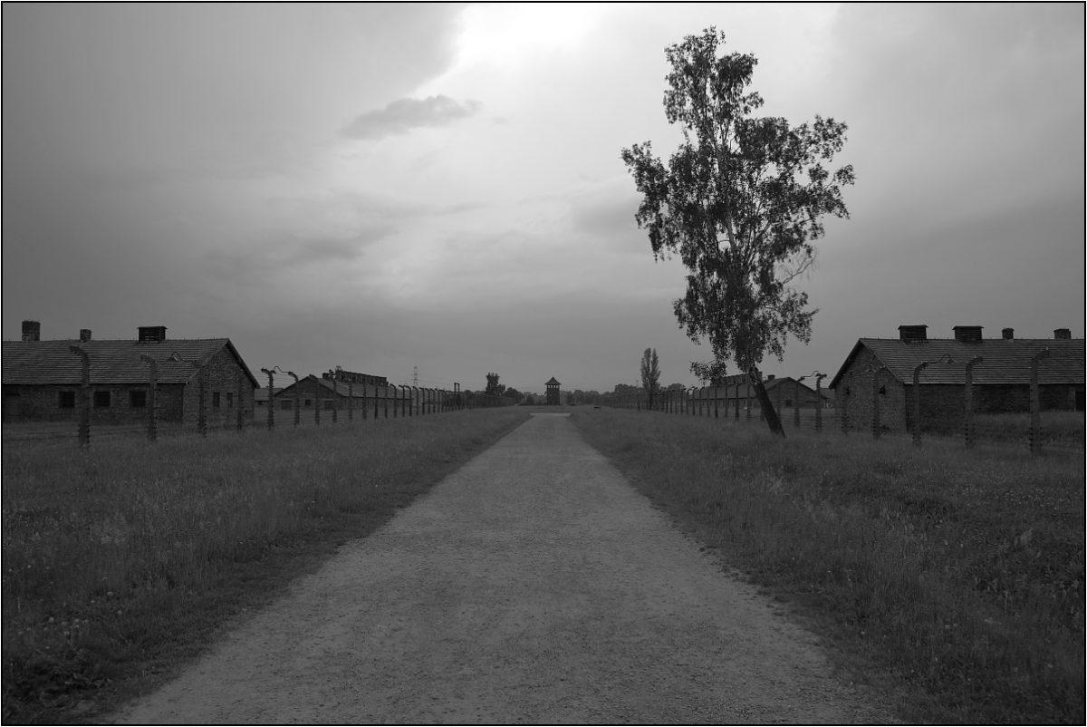 Освенцим Аушвиц концлагерь бараки