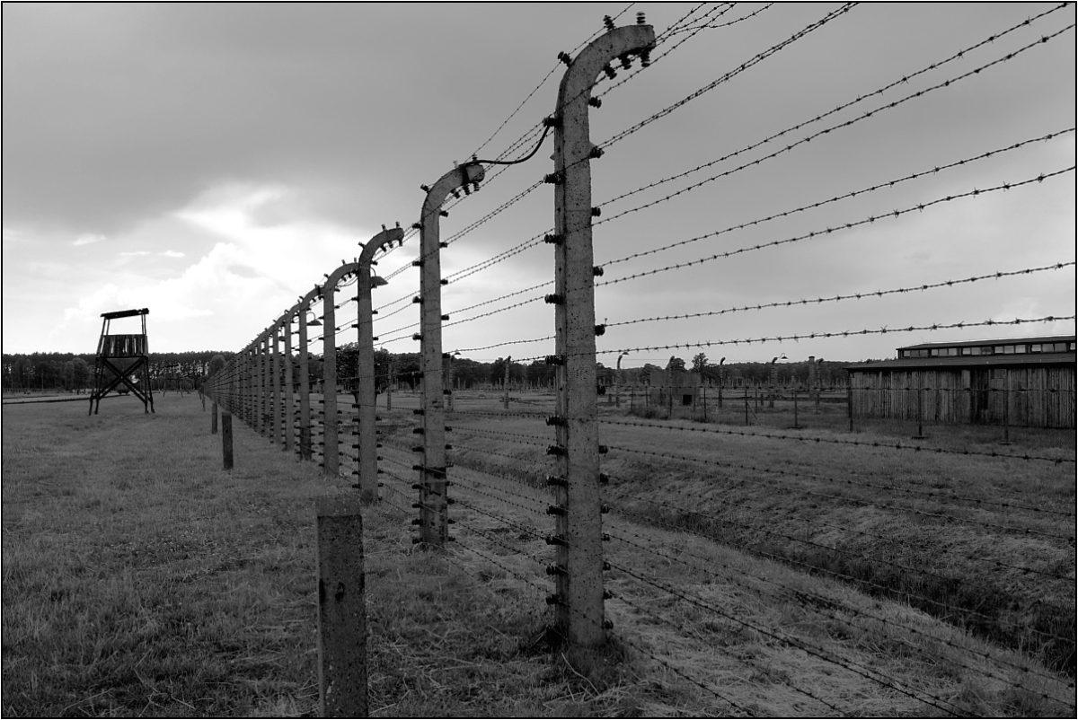 Освенцим Аушвиц концлагерь колючая проволока