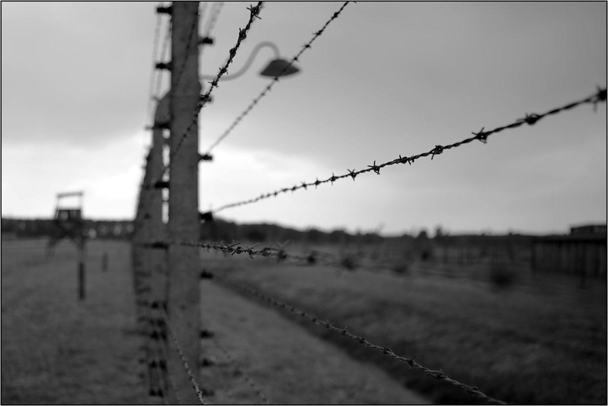 Освенцим концлагерь колючая проволока