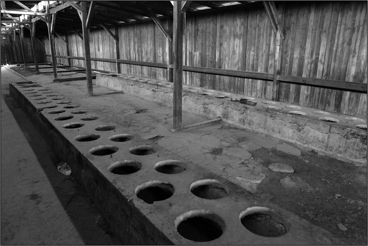 Освенцим барак общий туалет