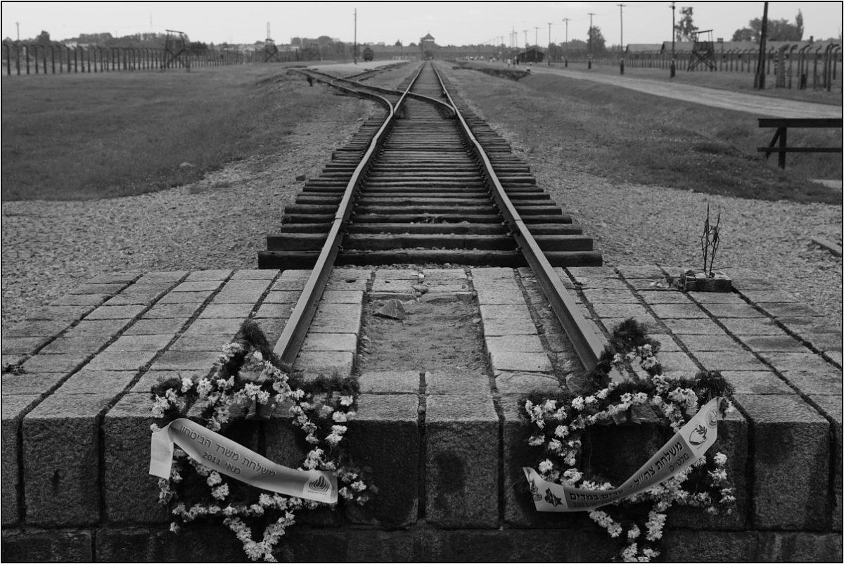 Освенцим железная дорога рельсы