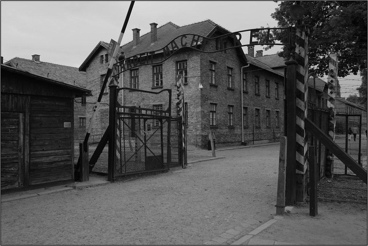 труд освобождает Освенцим ворота надпись