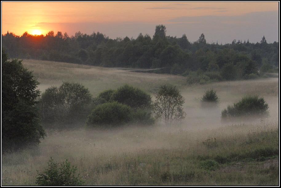 Исток Волги туман