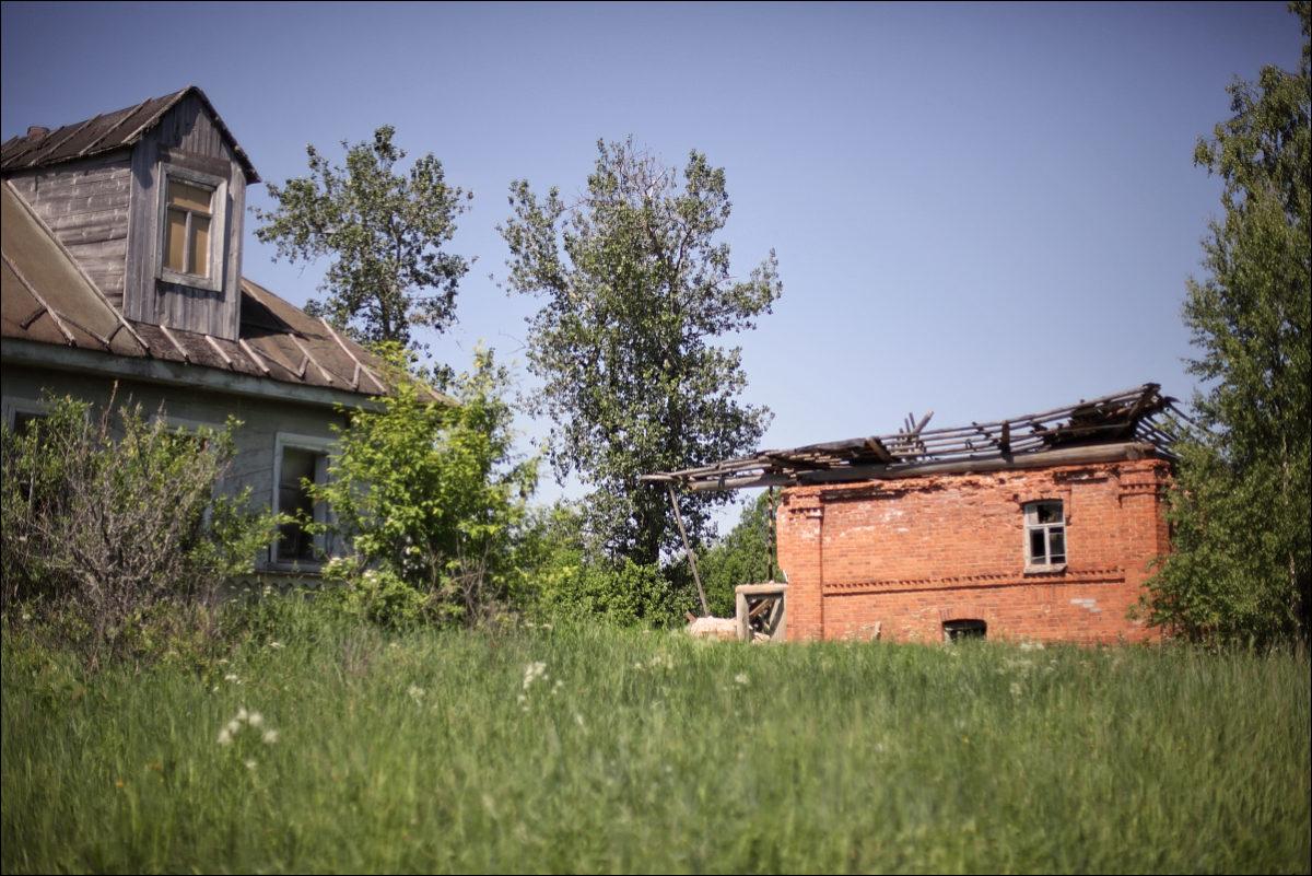 заброшенная деревня весна