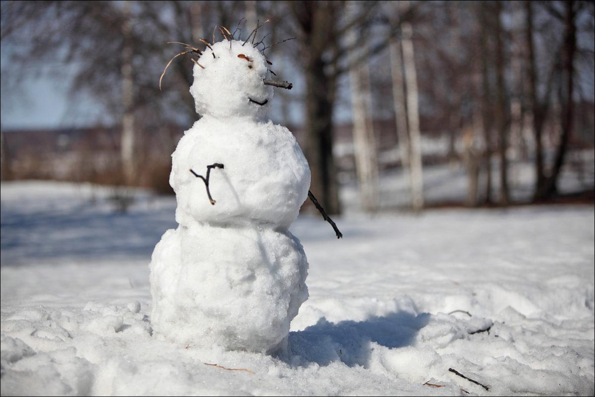 Плес снеговик