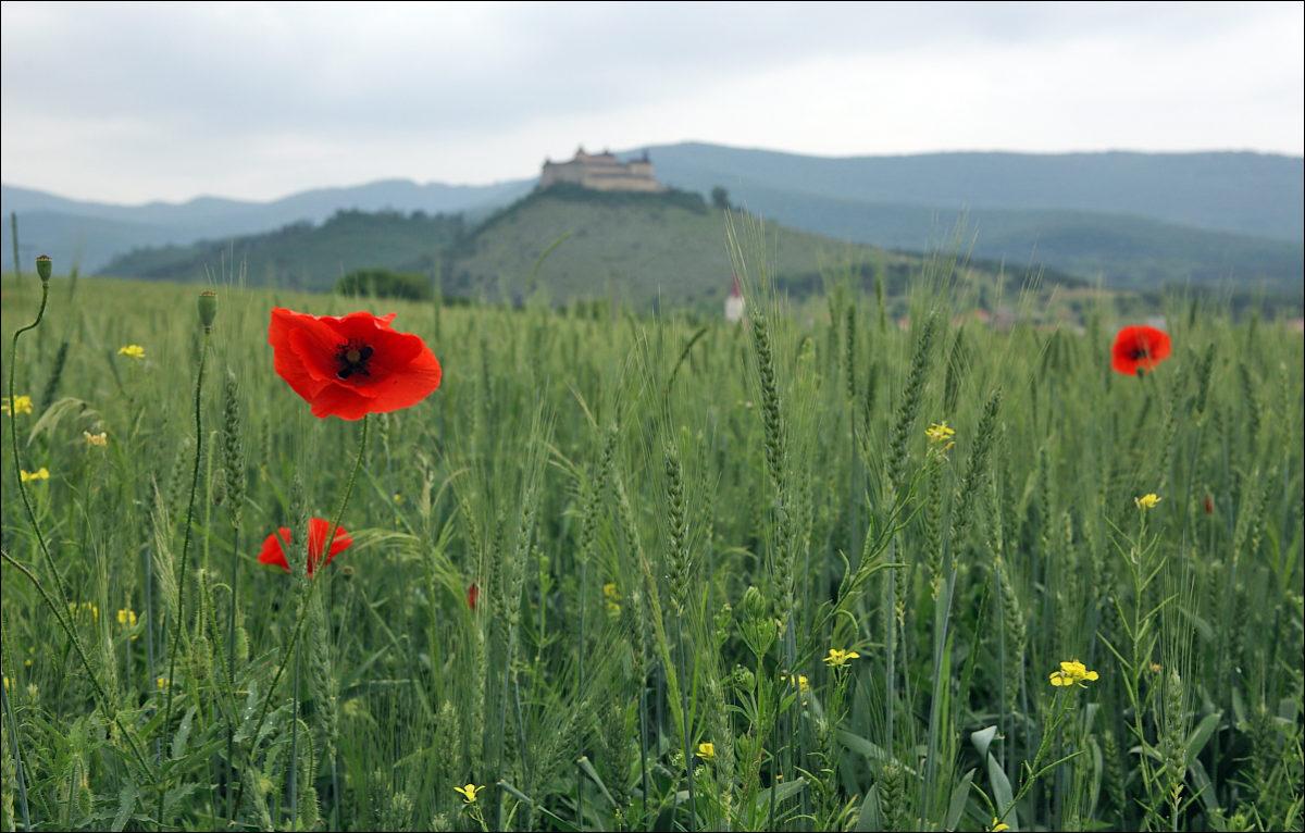 Замок Словакия