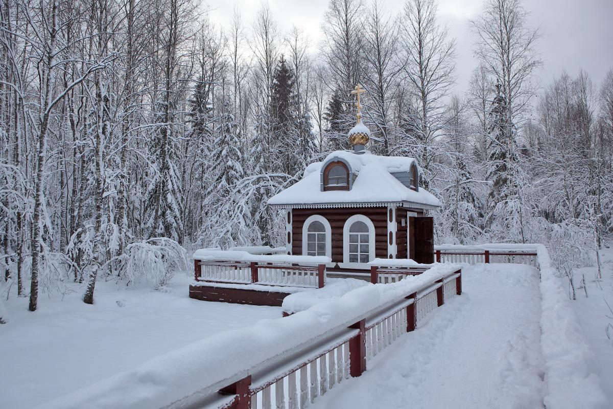 Исток Волги зимой