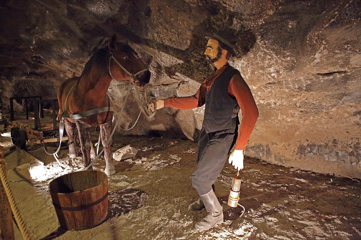 лошади в соляной шахте